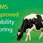 RoMS Approved Mobility Scoring